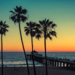 Summer Vacation Rentals – What Insurance Do I Need? palm trees against a sunset